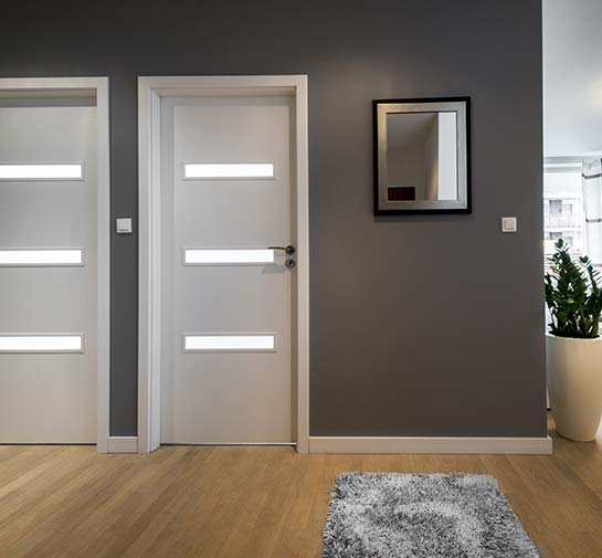 modern doors inside a home