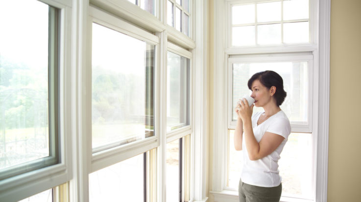 Window Replacement: The Key to Proper Insulation in the Summer or Winter